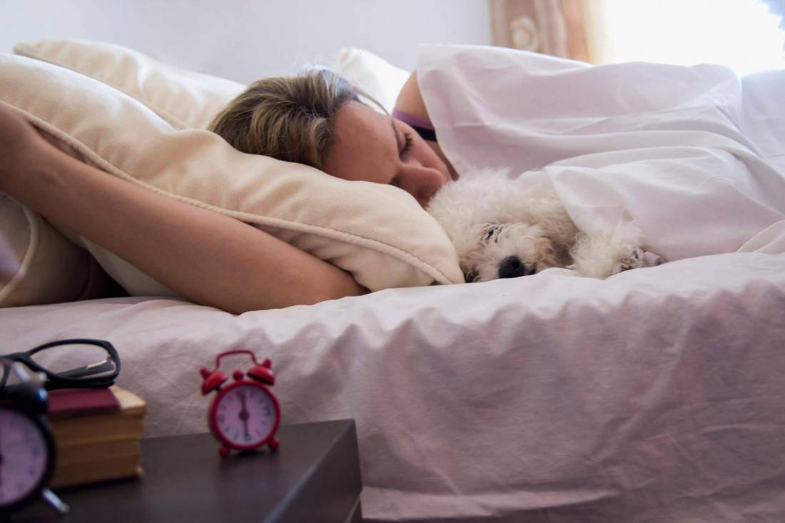 Можно ли брать собаку в постель