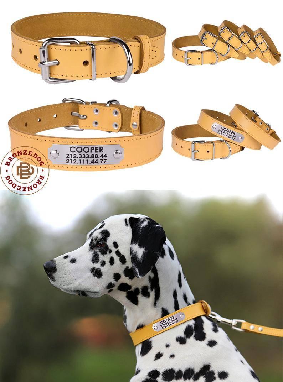 Ошейник для собаки своими руками: шьем и вяжем из паракорда
