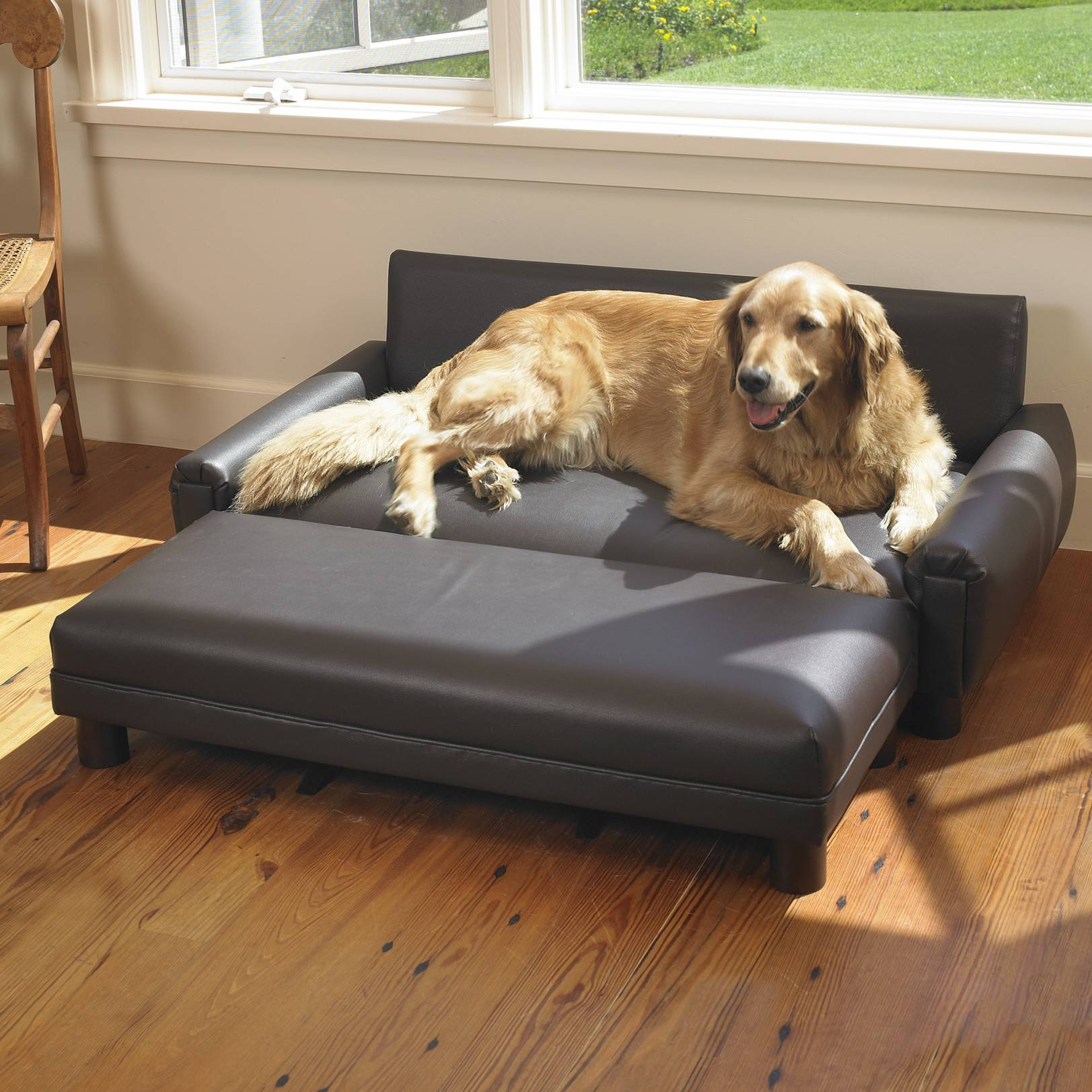 Как сделать, чтобы собаки не портили мебель: способы, которые мне помогают