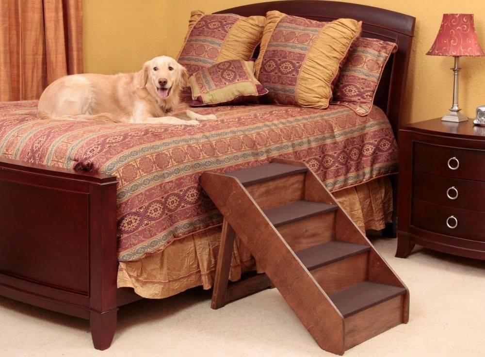 Как не подпускать собаку к мебели | блог о собаках