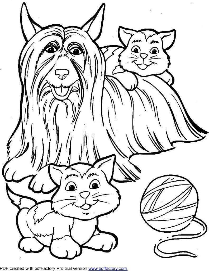 Раскраски кошка и собака для мальчиков и девочек высокого качества скачать и распечатать