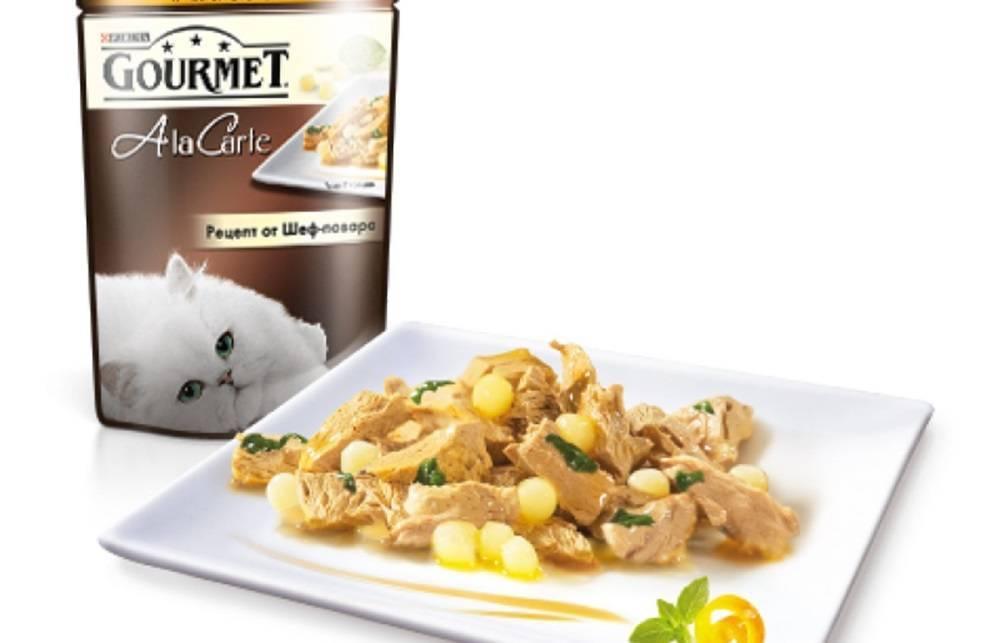 Честных рейтинг лучших кормов премиум класса для кошки: сравнительная таблица