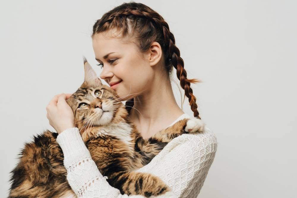 Почему некоторые кошки «разговорчивы» с хозяевами, а некоторые молчаливы - gafki.ru