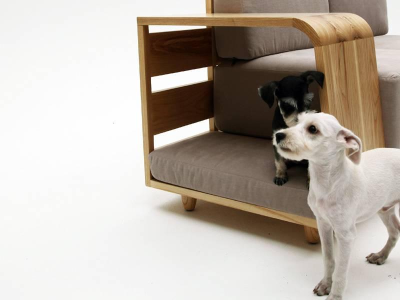 """Как научить собаку команде """"место!"""": основы тренировки"""