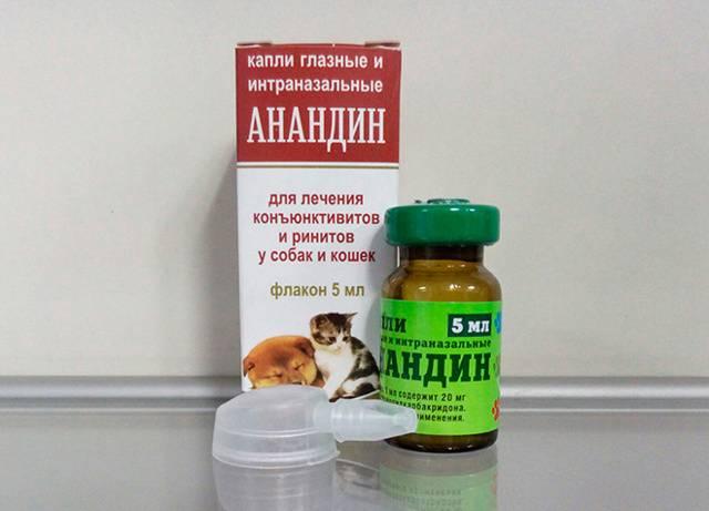 Максидин для кошек: инструкция по применению, цена, отзывы