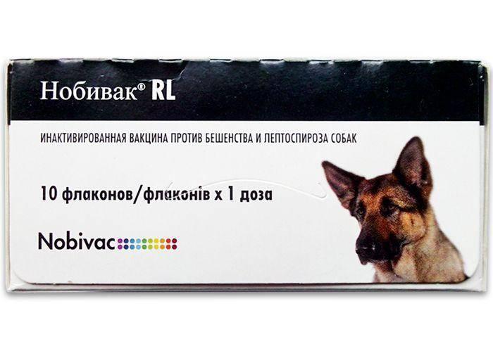 Нобивак рабиес / nobivac rabies (вакцина) для кошек и собак | отзывы о применении препаратов для животных от ветеринаров и заводчиков
