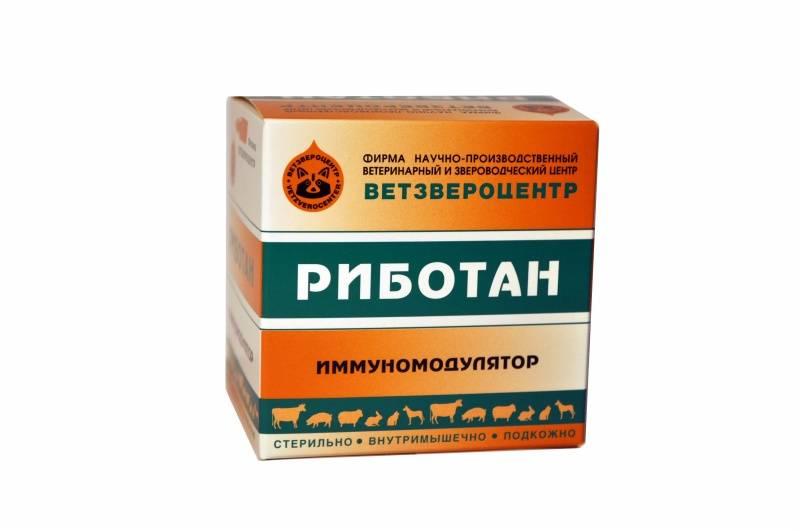 Биотех риботан, 1 мл, купить в москве и московской области - rosfirm.ru (403091467)