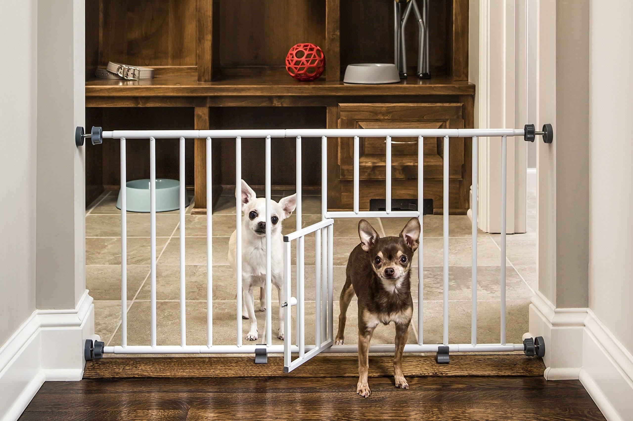 Как правильно выбрать ограждение для собак в квартиру или на дачу?
