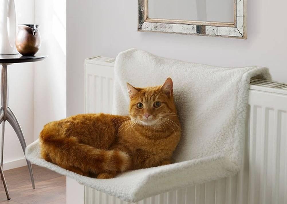 Гамак (лежанка) для кошки на батарею - как сделать своими руками?