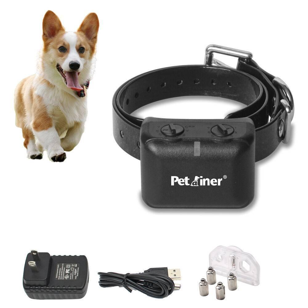Как пользоваться электронным ошейником для собак