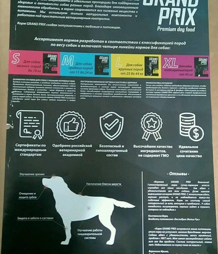 Сухие корма для собак: классы, критерии выбора и правила кормления