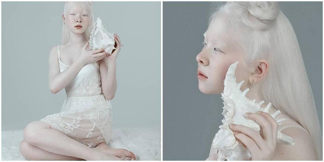 Что нужно знать, если завести белого добермана-альбиноса. как выглядит белый доберман: особенности характера и основные правила ухода