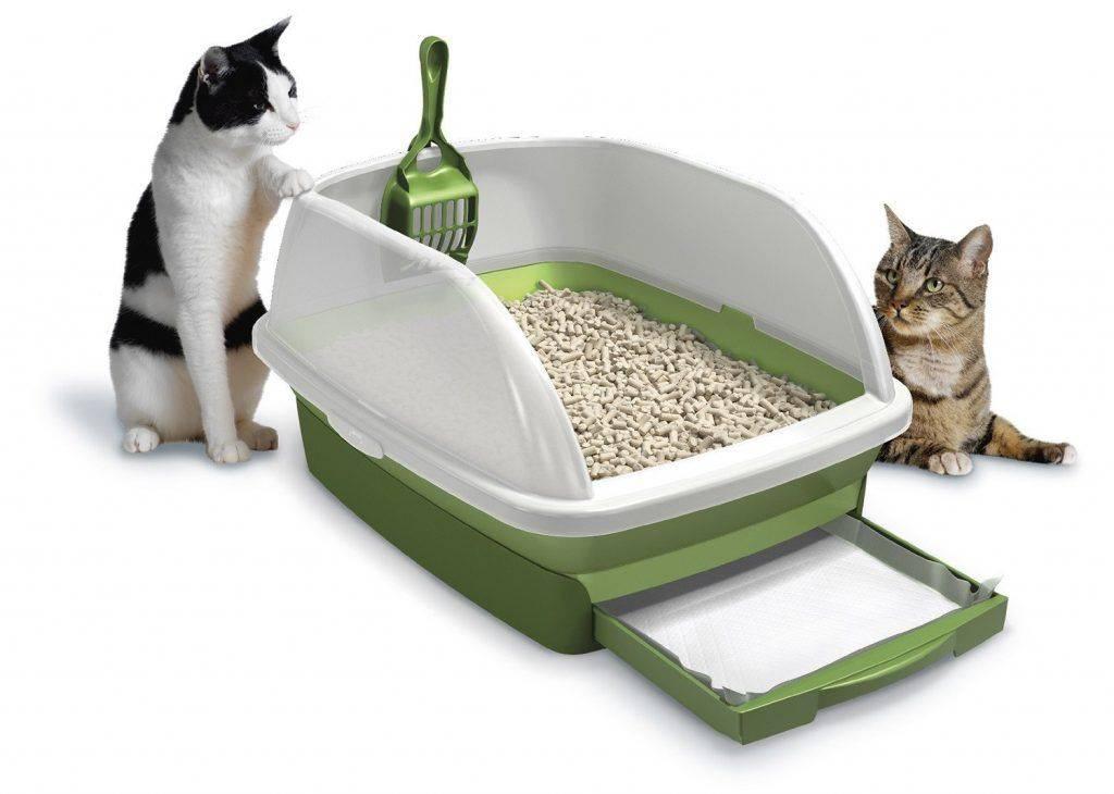 Лучшие виды наполнители для кошачьего туалета и топ производителей 2021 г.