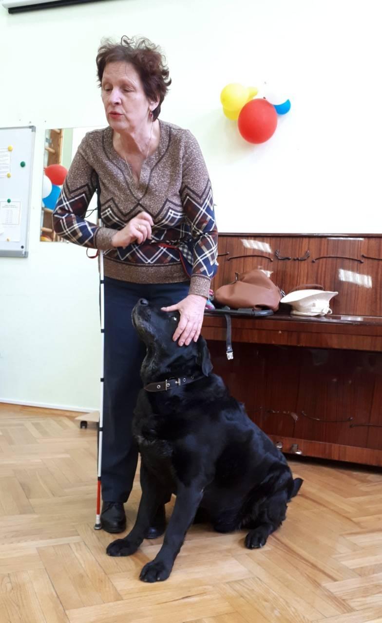 ≡ топ 14 ᐈ лучшие породы собак для пожилого человека | woofy dog