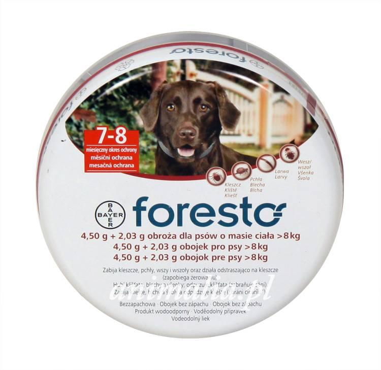 Ошейник от клещей и блох для собак форесто - инструкция по применению и отзывы