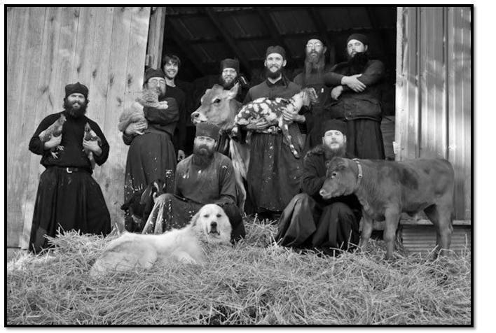 Почему нельзя держать дома собаку? религиозные правила