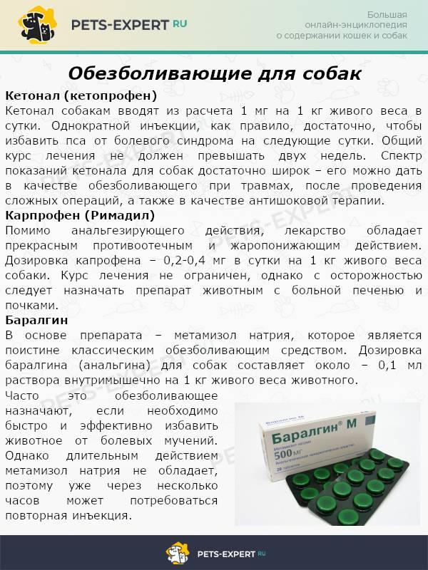 Ивермек - купить, цена и аналоги, инструкция по применению, отзывы в интернет ветаптеке добропесик