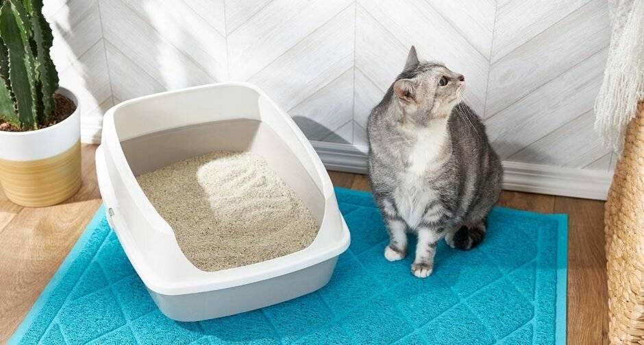 Накладки на унитаз для кошек