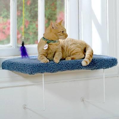 Лежанки для кошек своими руками: лучшие идеи и детальная инструкция