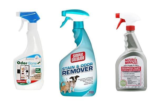 Чем убрать запах кошачьей мочи с ковра: как вывести пятно и очистить ковер