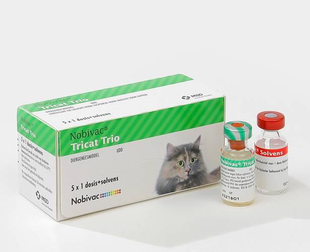 Вакцины для кошек линейки «нобивак» – rabies, tricat trio и другие: показания, инструкция по применению