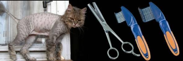 Колтунорез для кошек
