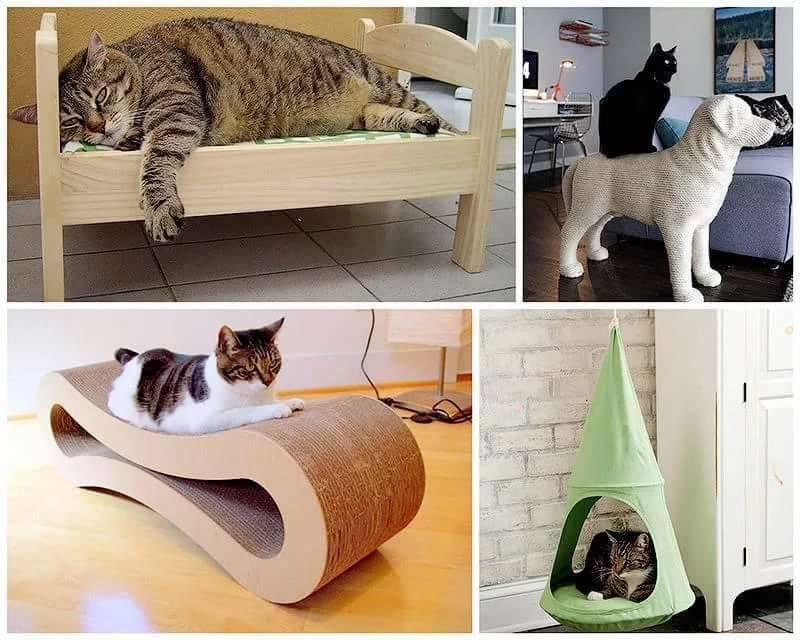12 вещей, которые должны быть в доме каждого владельца кошек