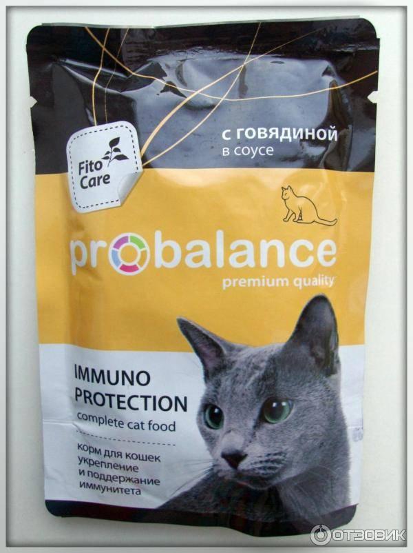 Корм для кошек probalance: отзывы и разбор состава - петобзор