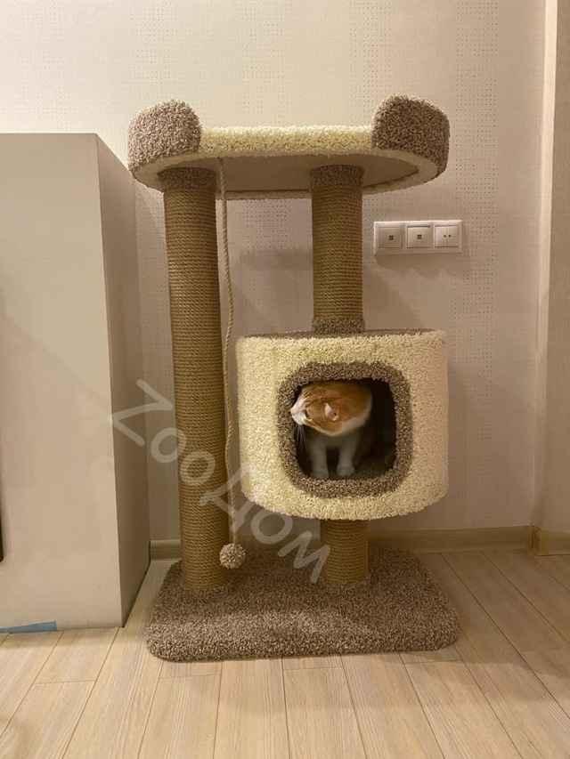 Как сделать когтеточку для кошки: пошаговая инструкция с фото