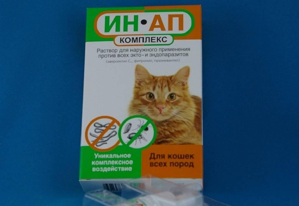 «ин ап комплекс» для кошек: инструкция по применению, отзывы, аналоги