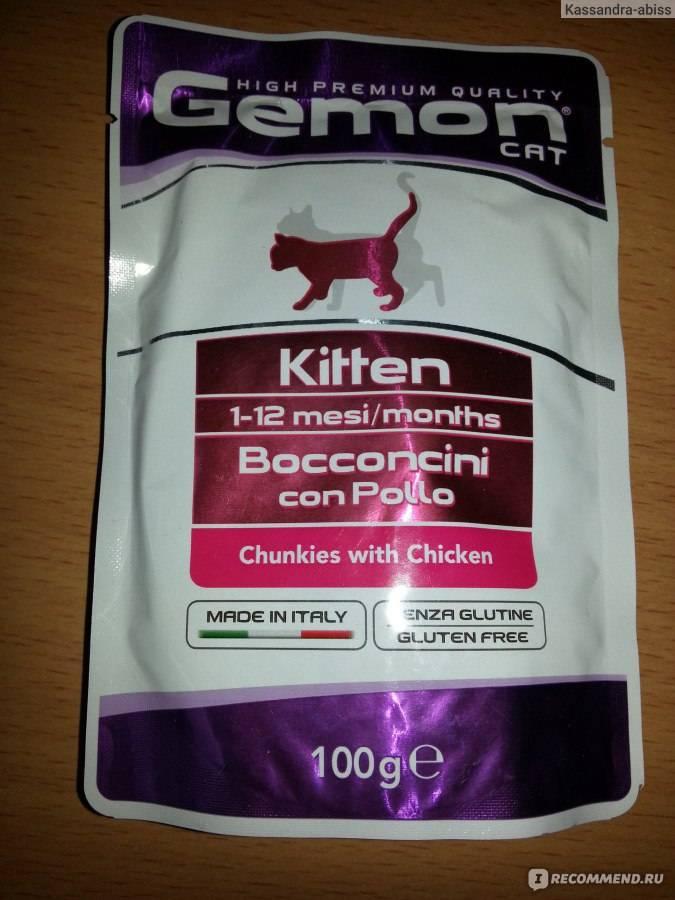 Можно ли кормить котенка кормом для взрослых кошек