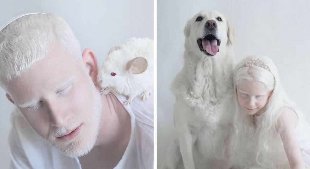 Красивые животные альбиносы фото подборка