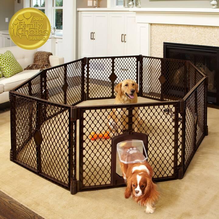 Вольеры для собак: назначение, виды, выбор, установка и уход