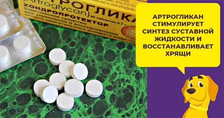 Артрогликан (таблетки) для собак и кошек | отзывы о применении препаратов для животных от ветеринаров и заводчиков