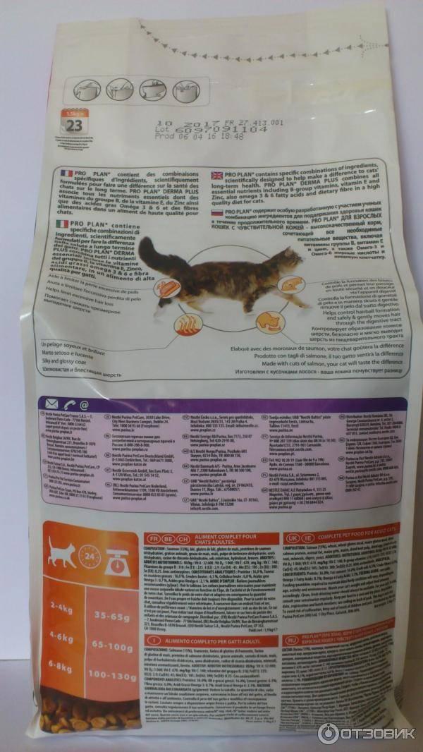 Orijen корм для кошек: 4 популярных вида, отзывы, описание