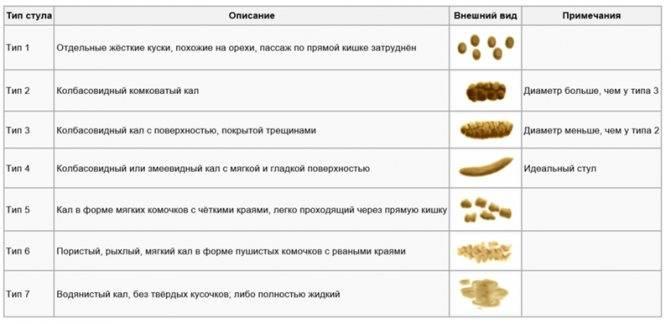 """Коронавирусный энтерит у собак -  лечение, признаки и симптомы. профилактика короновируса у собак  в москве. ветеринарная клиника """"зоостатус"""""""