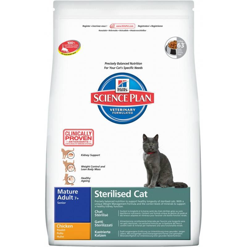 Правильный выбор корма для пожилой кошки