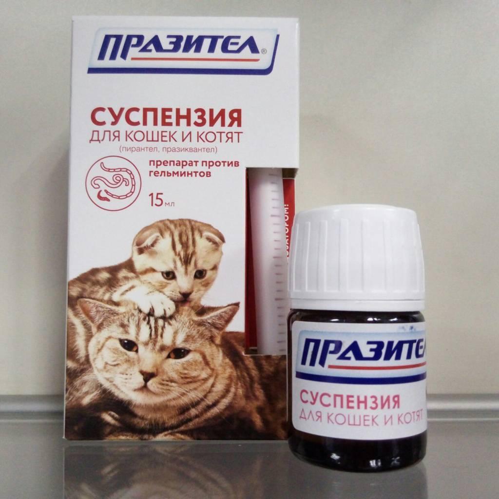 Глистогонное ( антигельминтное ) средство  для собак.