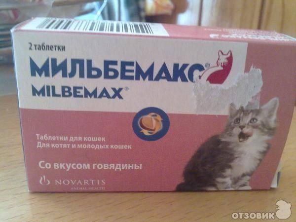 Можно ли кошкам давать обезболивающие таблетки. обезболивающее для кота: список, состав, описание, инструкция, назначение ветеринара и дозировка. артрогликан для кошек - инструкция по применению и дозировка