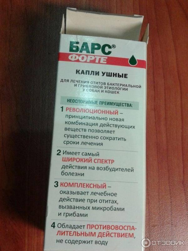 """Болезни ушей у кошек - симптомы  и лечение заболеваний уха у кошек в москве. ветеринарная клиника """"зоостатус"""""""
