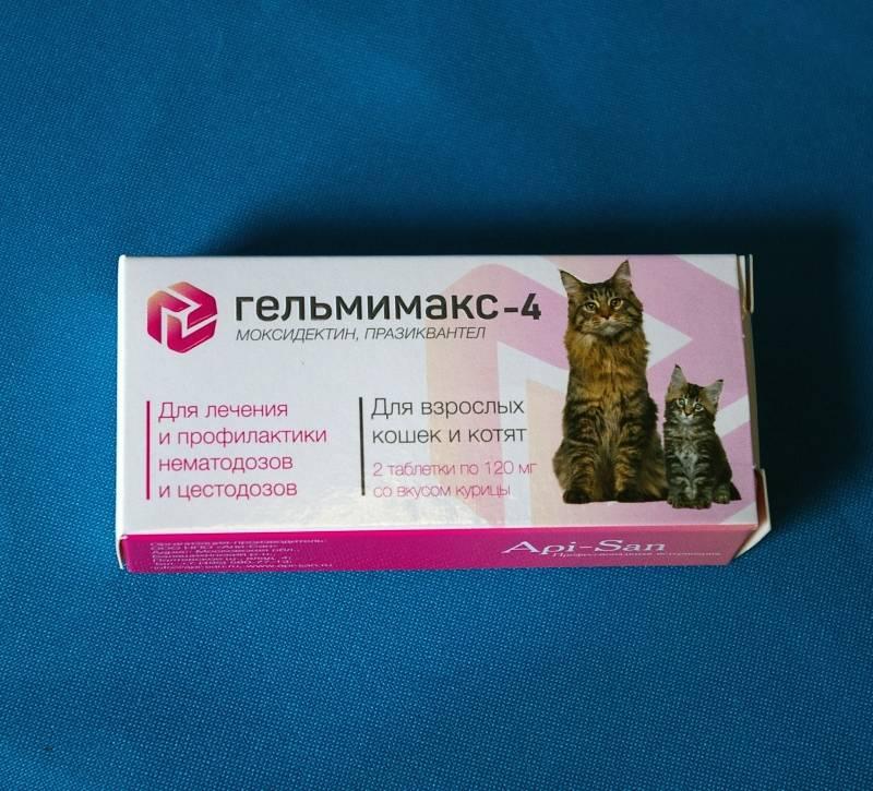 Препарат Гельмимакс: надёжное средство от паразитов у кошек