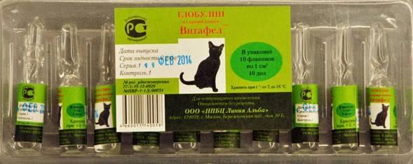 Витафел с для кошек: инструкция и показания к применению, отзывы, цена