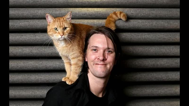Коты знаменитостей: клички, фото и интересные истории