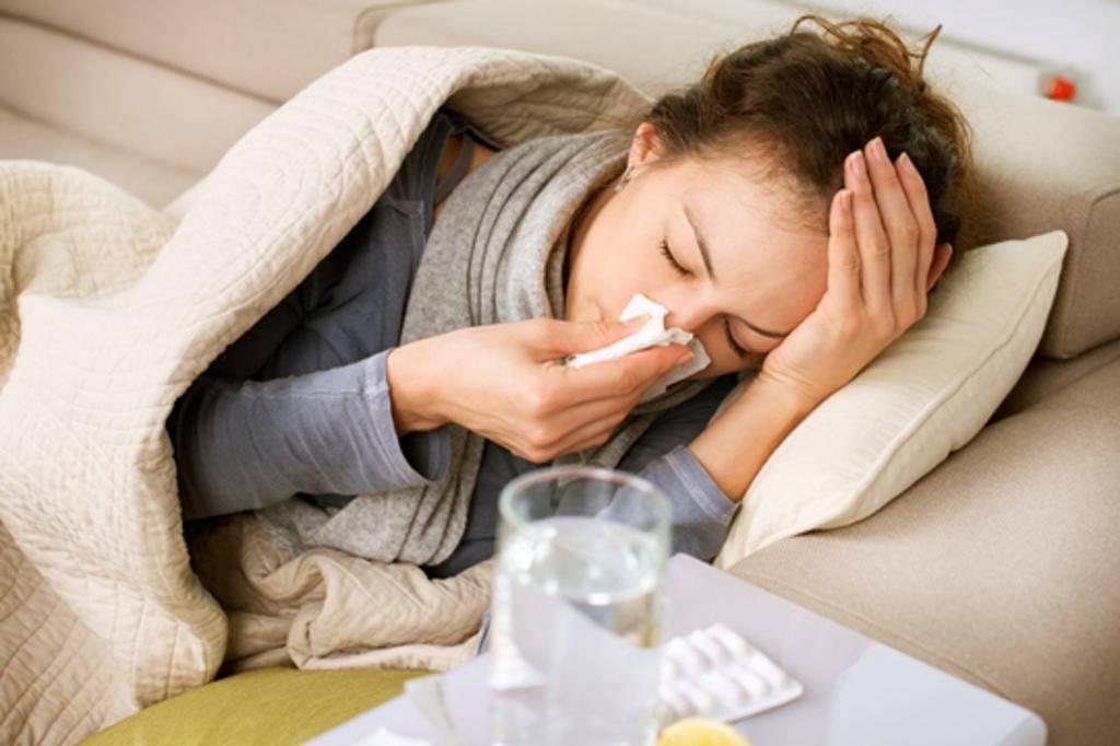 Аллергии у собак: виды, симптомы, признаки, лечение
