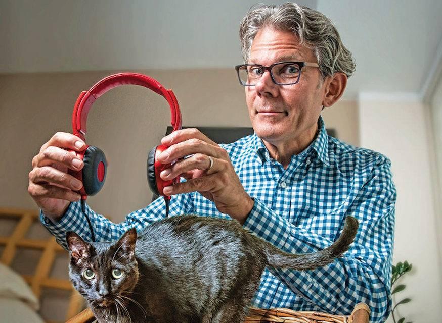 Музыка для котов и кошек: как успокоить или растревожить животное