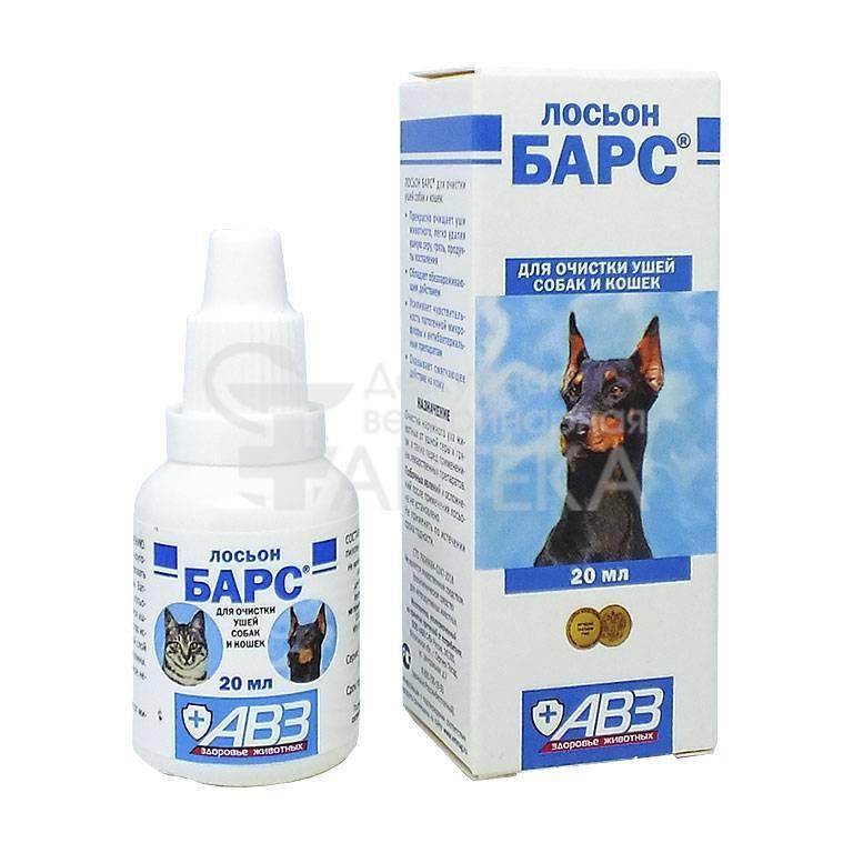 Как чистить уши собаке: частота процедуры, средства для чистки ушей у собак, что делать, если собака не дает чистить уши, приучение щенка к гигиене