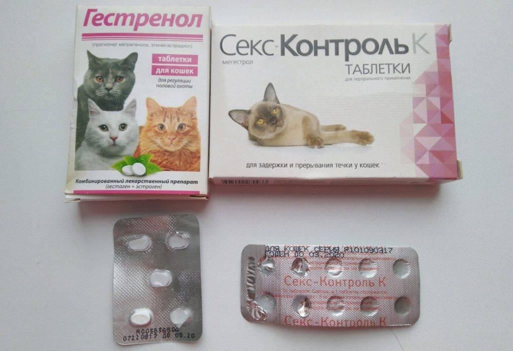 Спираль или противозачаточные таблетки: что лучше?
