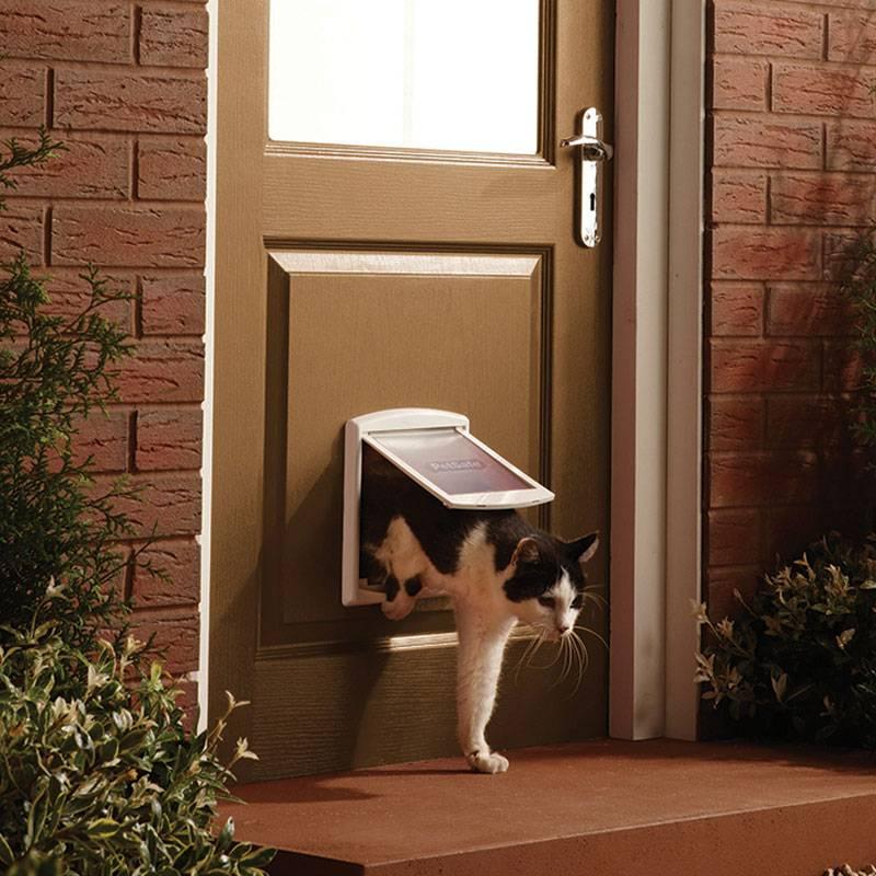 Дверь для кошки: своими руками или готовый вариант?