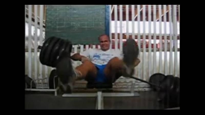 Мышцы спины у горилл