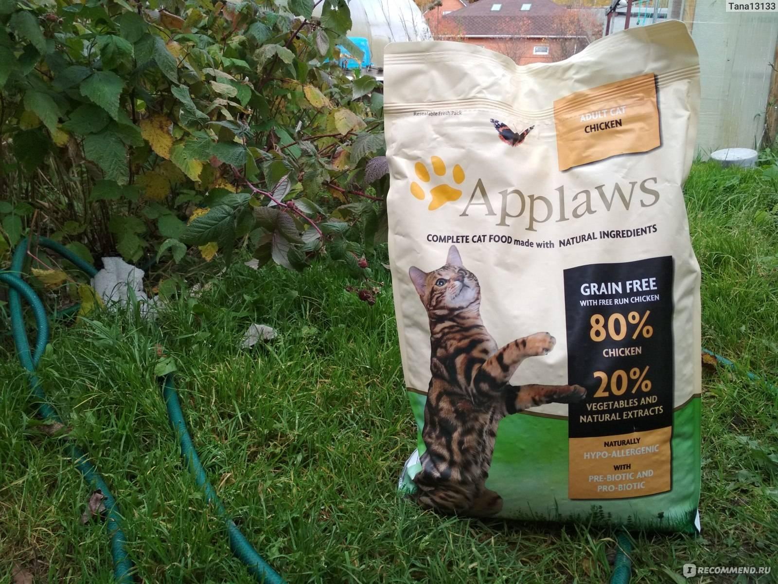 Холистик корм для кошек: рейтинг и отзывы о лучших кормах
